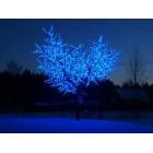 арт.Г9212 Светодиодное дерево-вишня, высота 1.9м, ширина 1.5м, цвет-синий
